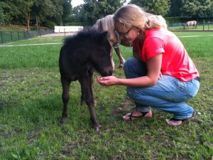 Saskia Nagtegaal (paard&coaching)